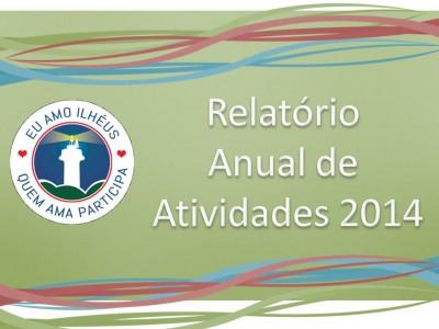 Relatorio Anual de Atividades INI 2014