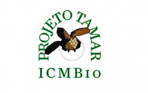 logo_Tamar